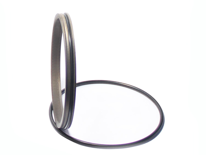 DSH-Find Wiper Seal Dpr-cylinder Wiper Ring Dustproof Scraper Seal-3