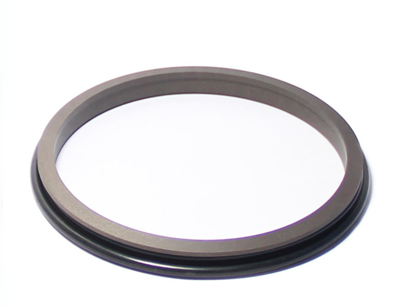 DSH-Find Wiper Seal Dpr-cylinder Wiper Ring Dustproof Scraper Seal-4