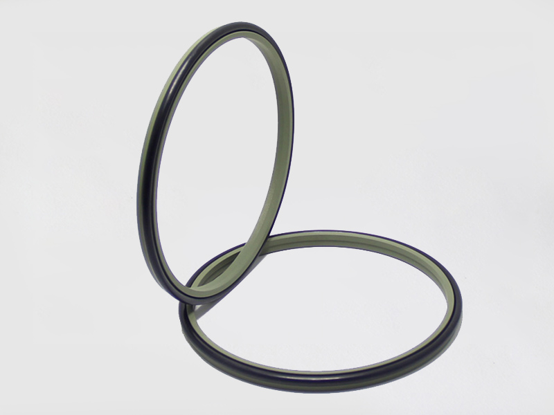 DSH-Wiper Ring, Dsz-rod Scraper Ptfe Hydraulic Wiper Ring