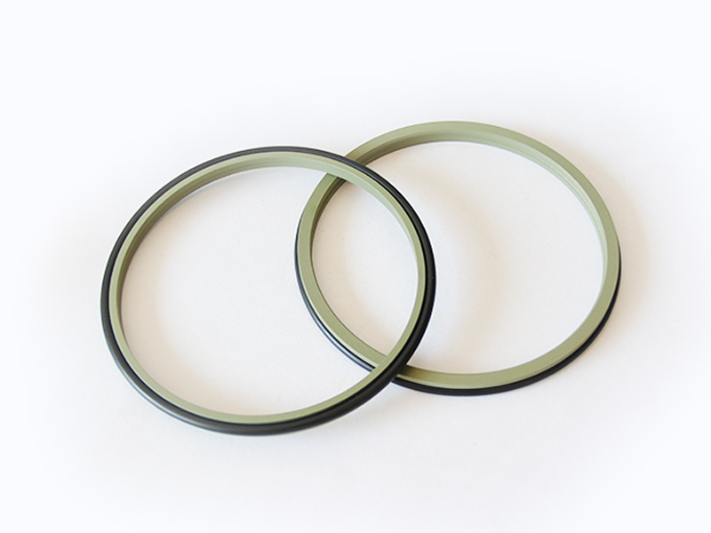 DSH-Professional Wiper Seals Hydraulic Wiper Seal Supplier
