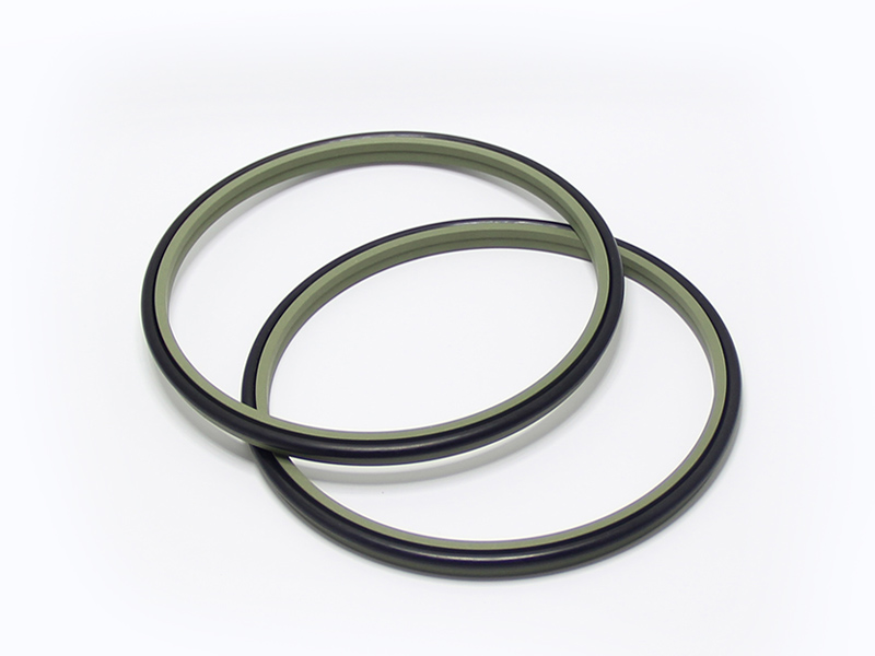 DSH-Professional Wiper Seals Hydraulic Wiper Seal Supplier-1