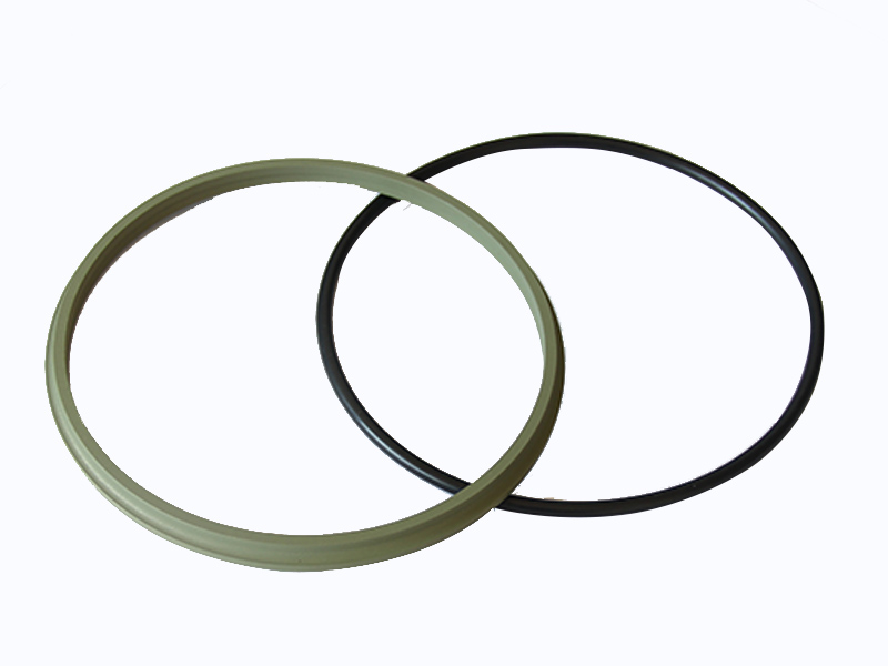 DSH-Professional Wiper Seals Hydraulic Wiper Seal Supplier-4
