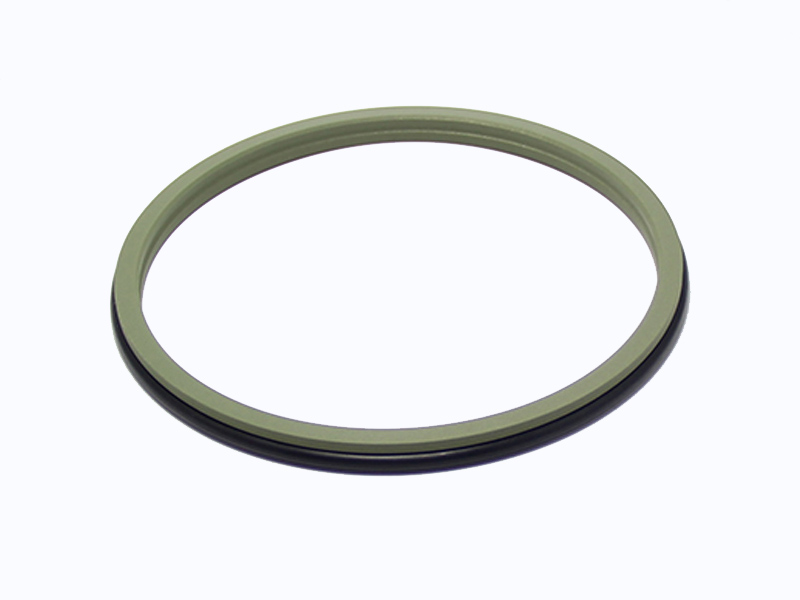 DSH-Professional Wiper Seals Hydraulic Wiper Seal Supplier-2