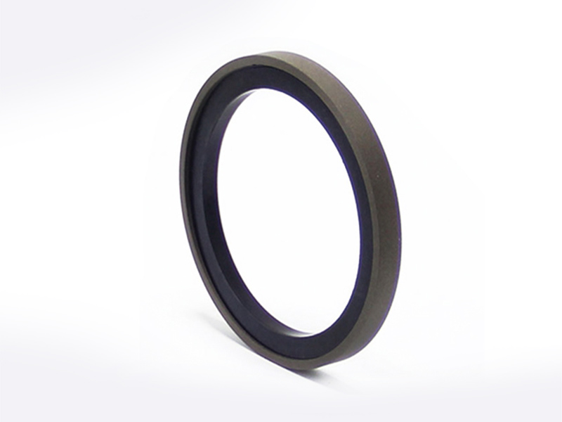 DSH-High-quality Piston Seal Ring | Excavator Heavy Duty Piston Seal-2