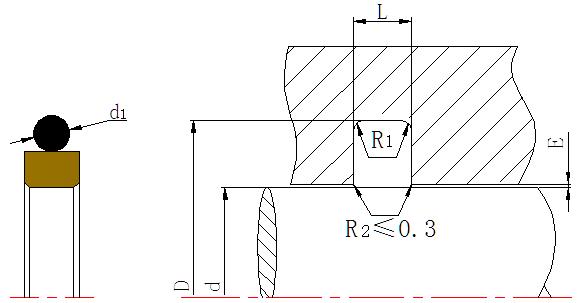 DSH-Rod Wiper Dsi-bronze Filled Ptfe Hydraulic Rod Seal Glyd Ring-4