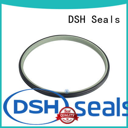 dkb wiper seal catalogue dprcylinder for metallurgical equipment DSH