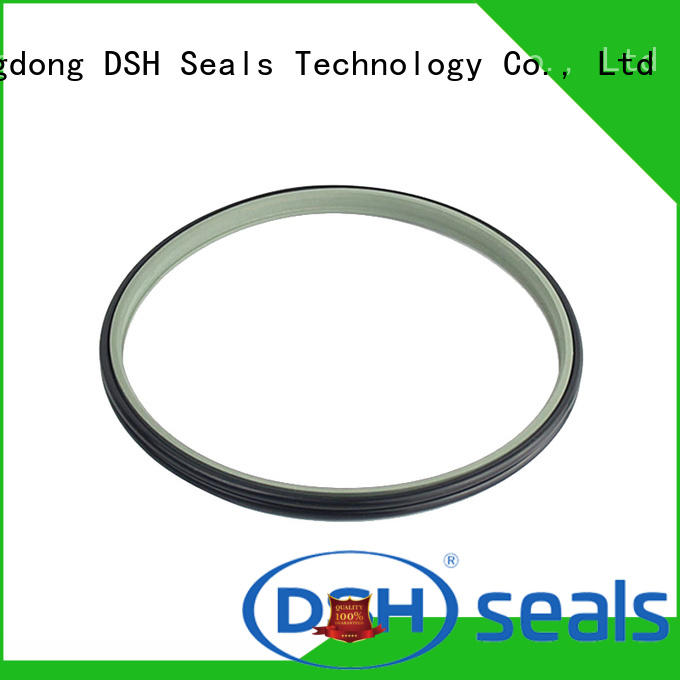 DSH dust proof wiper seal supplier for oil industry