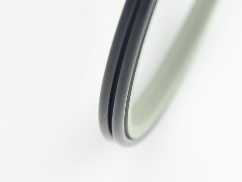 DSH-Best Wiper Seals Dpe - Hydraulic Ptfe Double Wiper Dust Seals-1