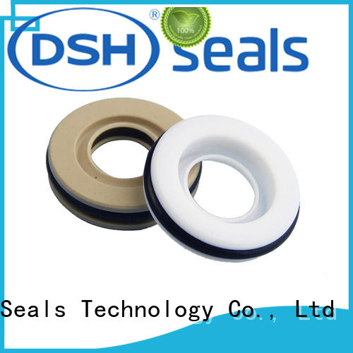 DSH performance teflon seal with good price for automotive industry
