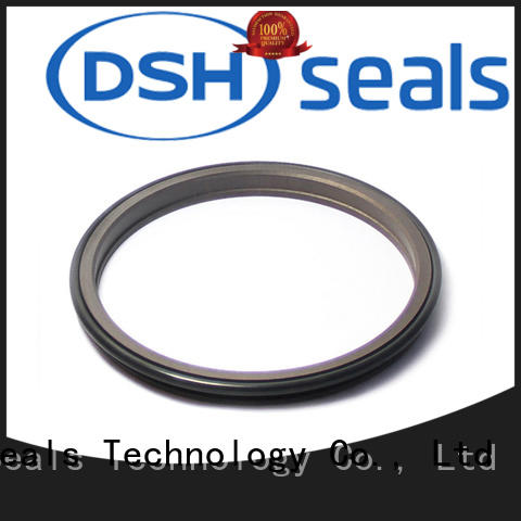 DSH double scraper seal factory price for machine