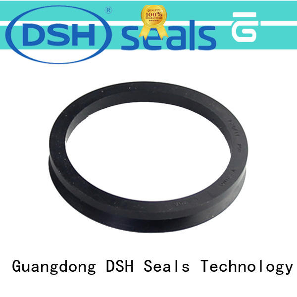 DSH seal ptfe rotary seals series for engineering