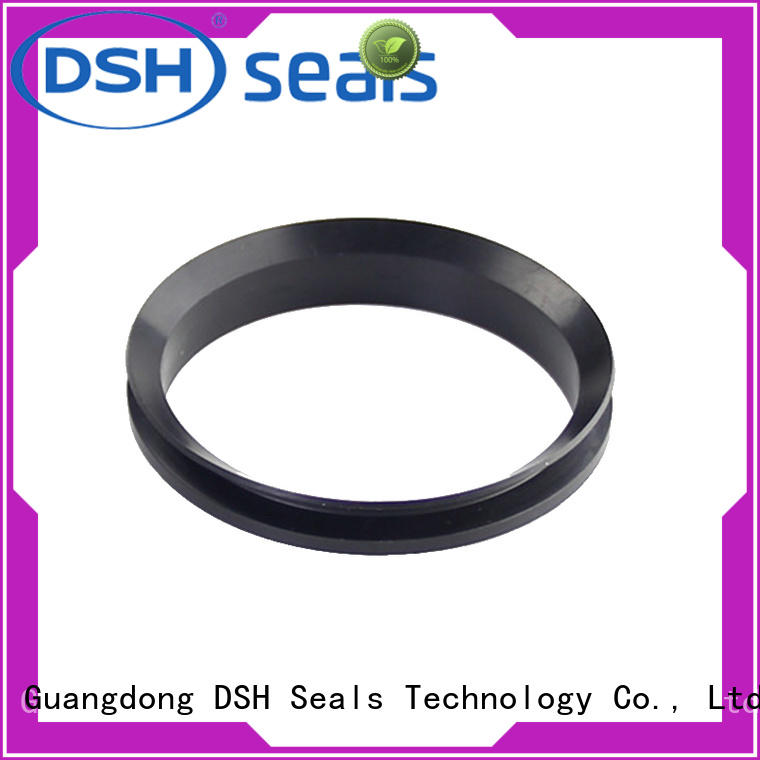 DSH rubber rotary seal customized for automotive industry