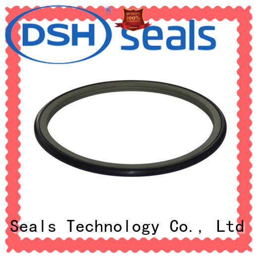 DSH shaft rotary shaft oil seals customized for hydraulic industry