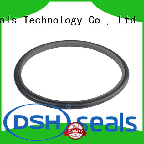 DSH delta step seal wholesale for oil industry