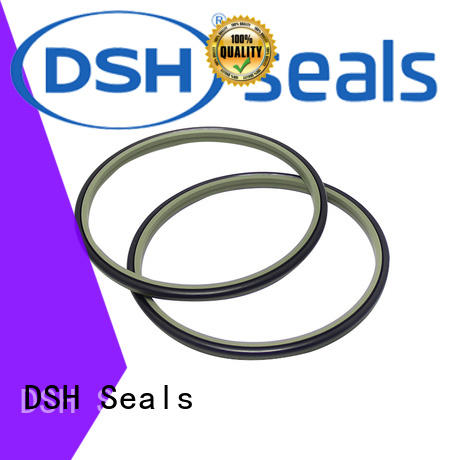 DSH excavator wiper seals factory price for oil industry