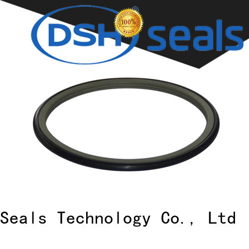 seal rotary seal manufacturer for refrigeration equipment DSH