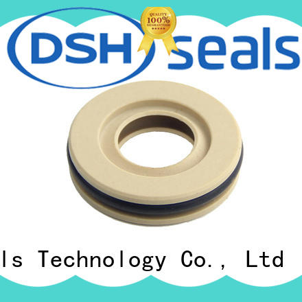 DSH seals teflon oil seal with good price for engineering