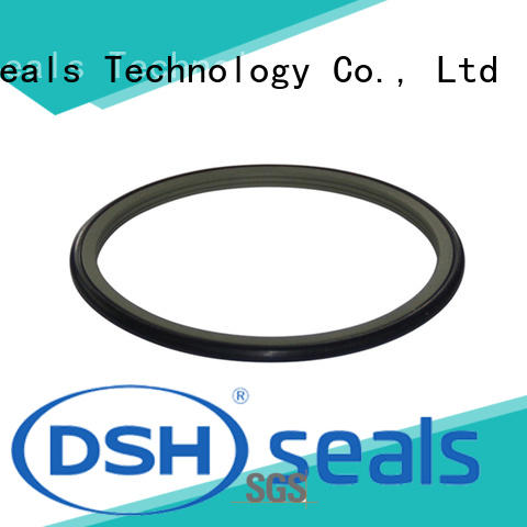 shaft oil seal rod for engineering DSH