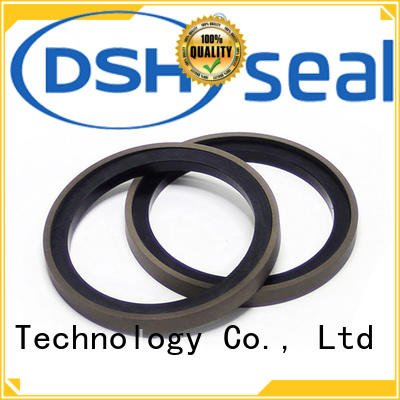 DSH step piston seal catalogue with good price for gas industry