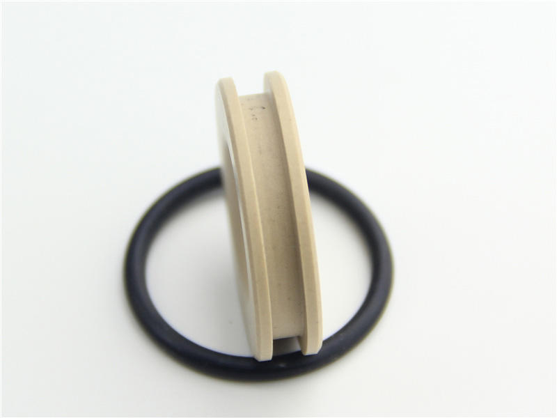 DSH-Professional Ptfe Oil Seals Teflon Gasket Manufacture