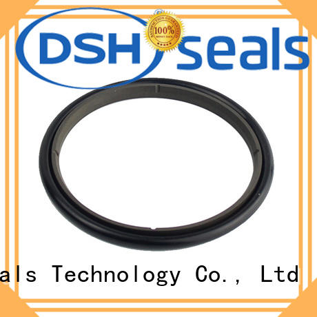 DSH ring rod seal factory price for electric equipment