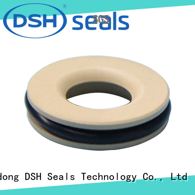 DSH rotary ptfe oil seals factory for engineering
