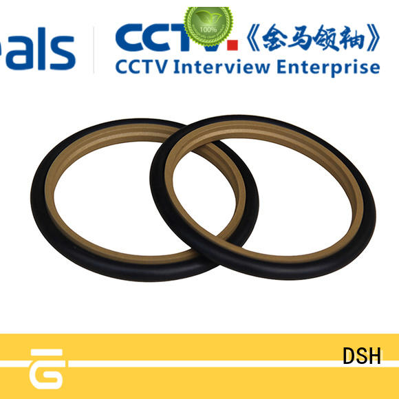 seals piston rod seals hydraulic DSH