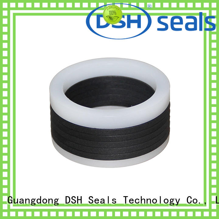 cylinder piston rod seal design for automotive industry