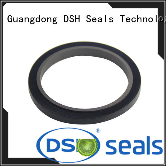 DSH low pneumatic cylinder rod seals personalized for electric equipment