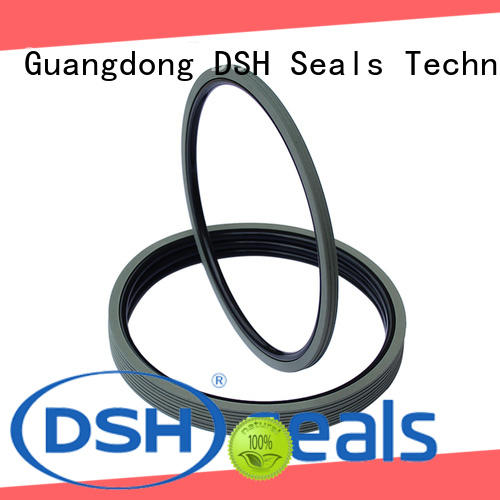 DSH rings rotary shaft oil seals manufacturer for engineering