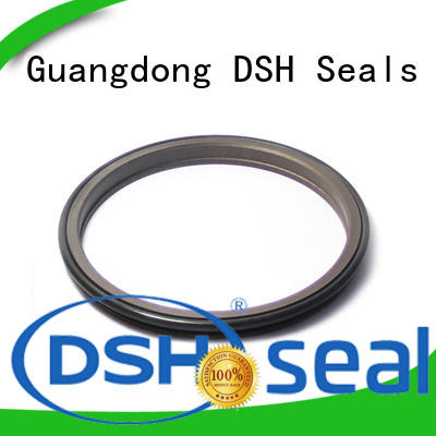 seals wiper seal catalogue wholesale for oil industry DSH