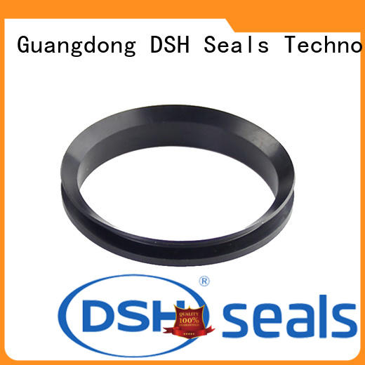 DSH piston shaft oil seal customized for hydraulic industry
