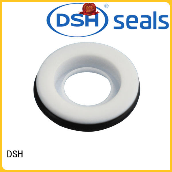 DSH corrosion resistant teflon ring seal manufacturer for automotive industry