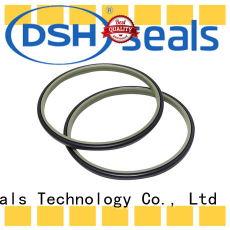 DSH double wiper ring wholesale for gas industry
