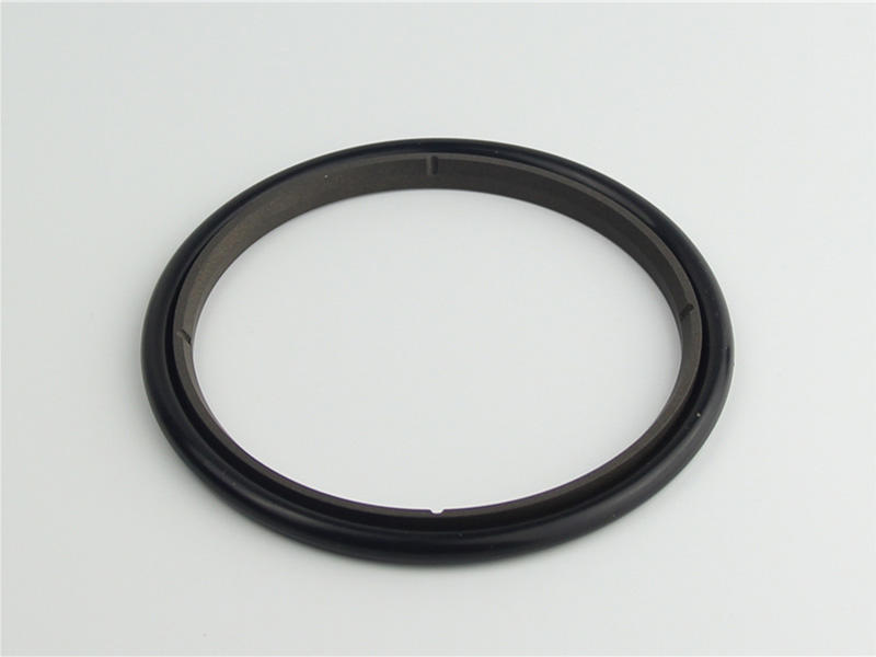 DSH-High-quality Ptfe Rod Seal | Hbts - High Speed Hydraulic Rod Seal-1