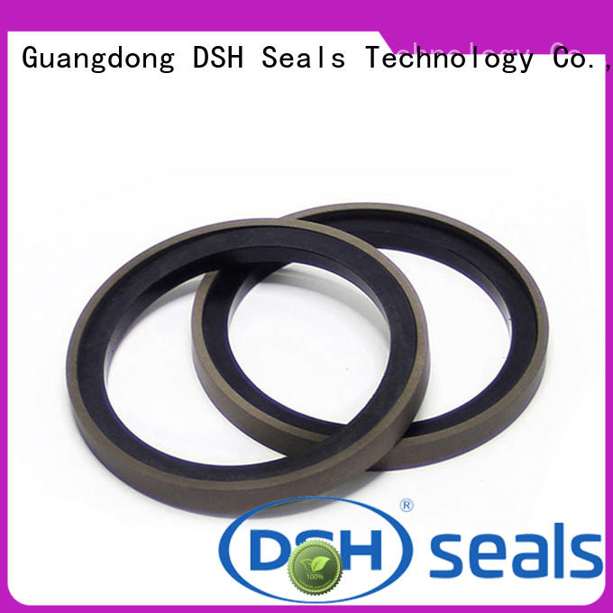 DSH encapsulated cylinder piston seal with good price for gas industry