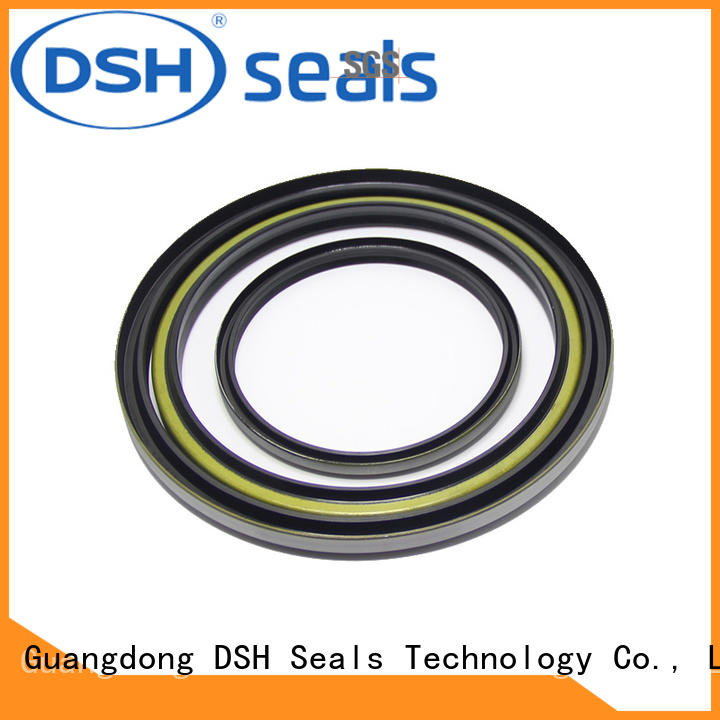 DSH dust proof scraper seal factory price for gas industry