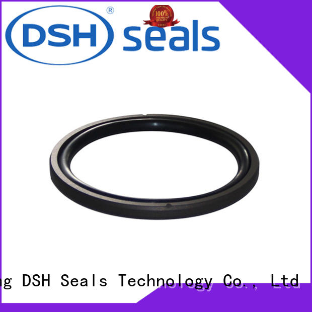 rubber pneumatic piston seal ptfe for coal mining machinery DSH