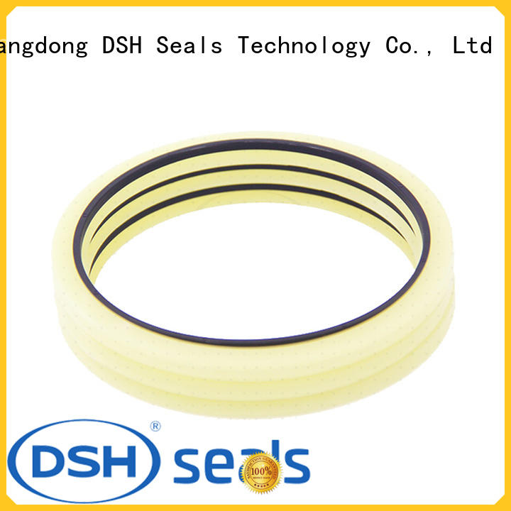 DSH low hydraulic rod seals supplier for gas industry