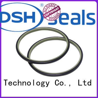 DSH dust proof scraper seal personalized for gas industry