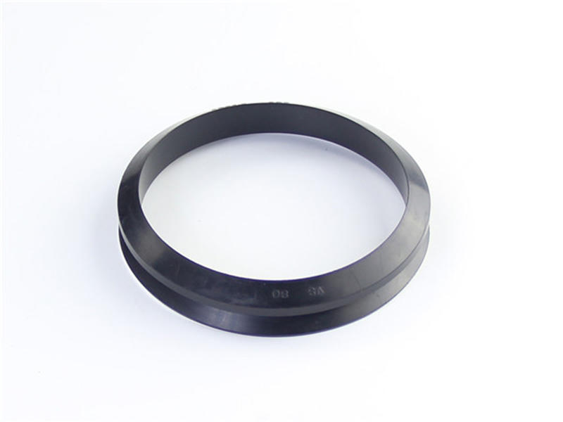 DSH-Rotary Shaft Seal Dvs - Rotary Rubber Seal V Ring-2