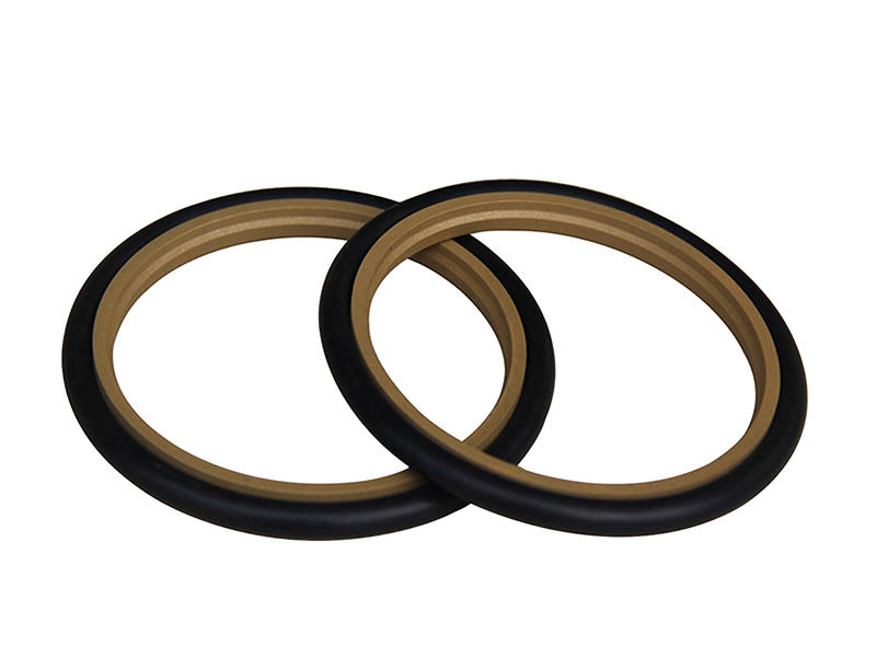 DSH-Hydraulic Rod Seal Spns-hydraulic Rod Seal Low Speed Step Seal-2
