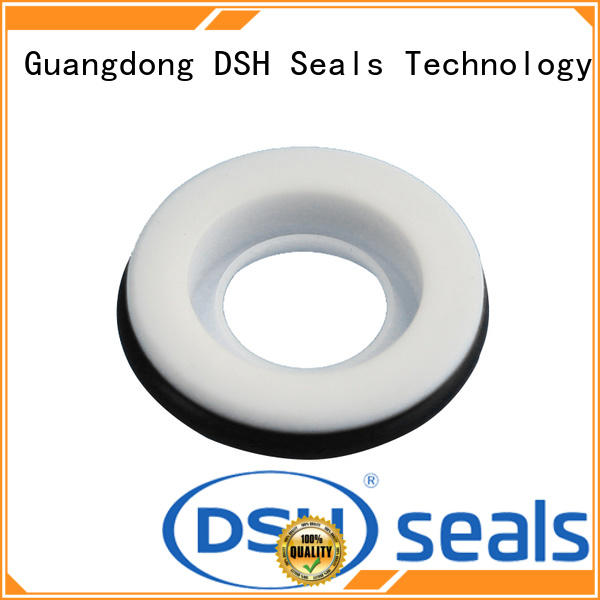 DSH ptfe oil seal ptfe design for engineering