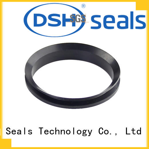 DSH dns rotary shaft seal ringsdirectly sale for engineering
