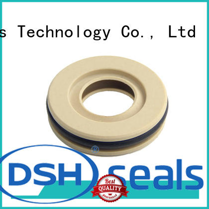 DSH low oil seal ptfe design for refrigeration equipment