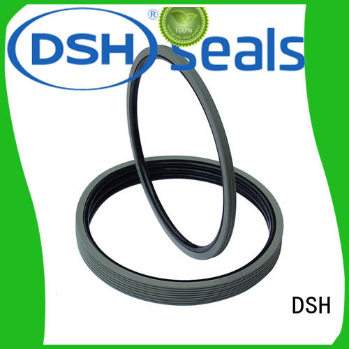 rubber high speed rotary shaft seals rings for engineering DSH