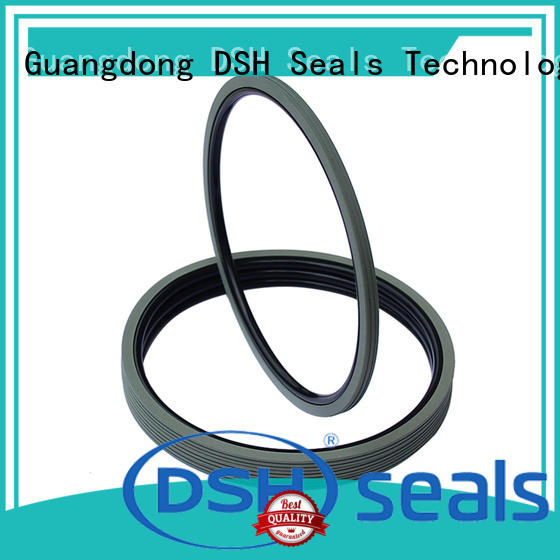 piston rotary shaft seal catalog rings for engineering DSH