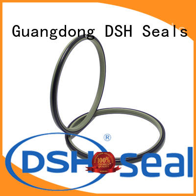 ring wiper ring seals for oil industry DSH