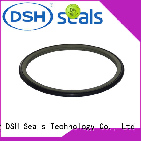 DSH piston shaft oil seal series for hydraulic industry