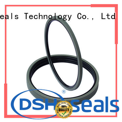 DSH rubber shaft oil seal customized for automotive industry